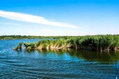 昆明呈贡海东湿地公园【海东公园介绍、昆明湿地】