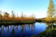 昆明市捞鱼河湿地公园【捞鱼河公园在哪、怎么去、介绍】