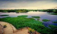 东大河湿地公园简介【昆明市最大的河口湿地东大河公园】