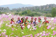 石林彝族撒尼人的传统习俗【云南昆明神圣的密枝节】